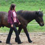 Führungskompetenzen mit Hilfe von Pferden stärken